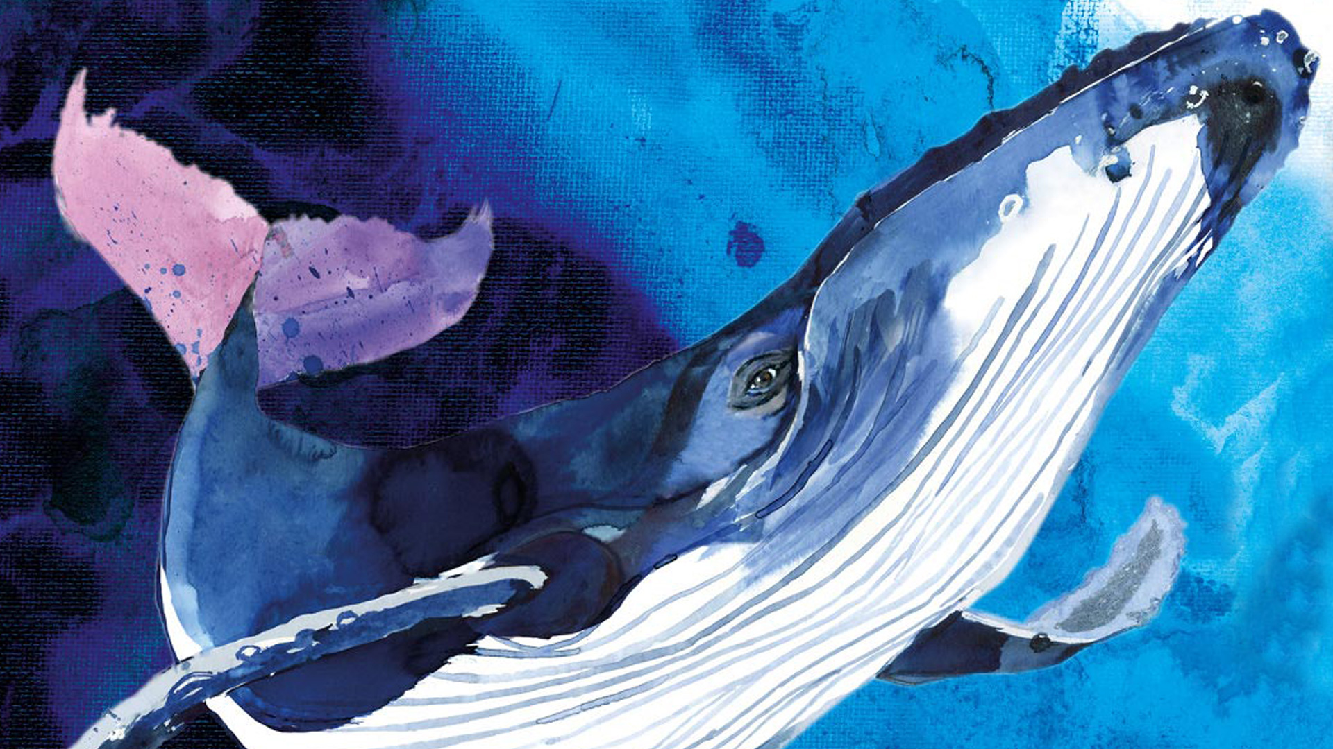 Whales: Beneath the Surface