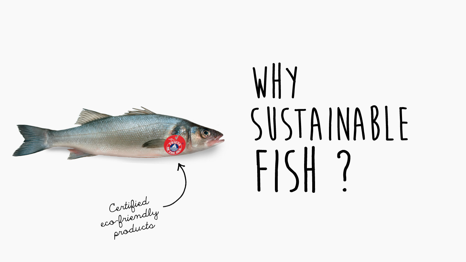 buying sustainable fish