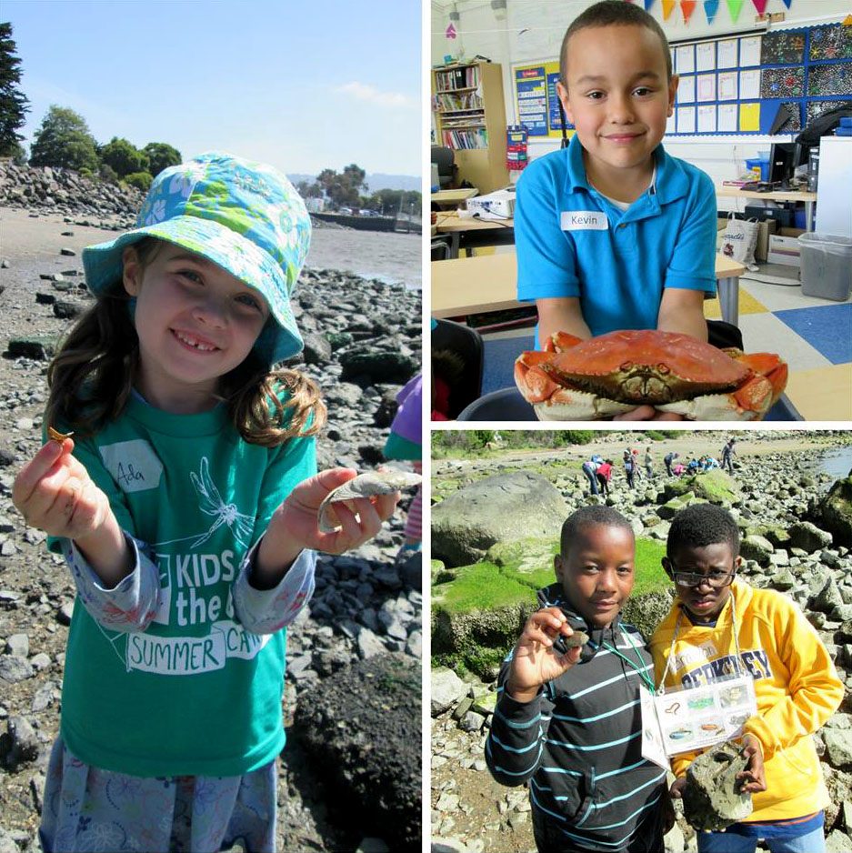 kids_for_the_bay_environmental_education_4