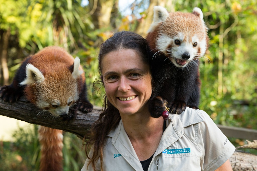 We work to ensure a secure future for the red panda, and the people that depend on its home for survival