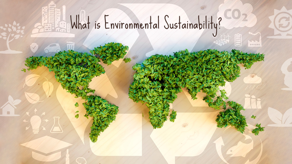What is environmental sustainability